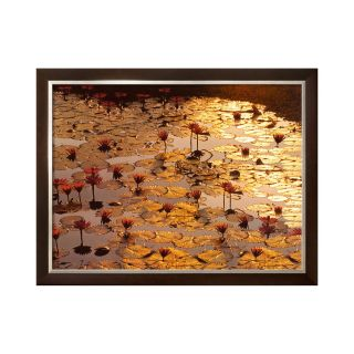 ART Lotus Pond Framed Print Wall Art