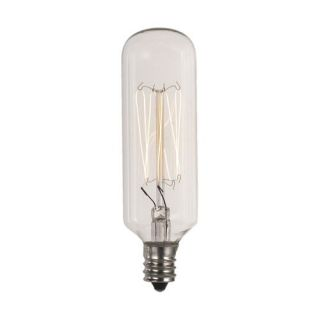 40W T8 Vintage Carbon Filament Lamp