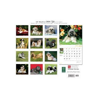 Shih Tzu, For The Love Of 2013 Deluxe Wall (Multilingual Edition): Browntrout Publishers: 9781421694436: Books