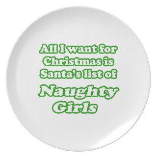 I want Santa's list of naughty girls Party Plates