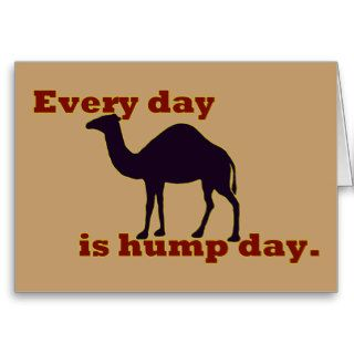 """Camel """"Every Day is Hump Day"""" Greeting Cards"""
