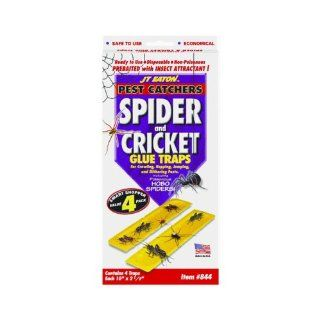JT Eaton 844 Pest Catchers Large Spider and Cricket Size Attractant Scented Glue Trap, 4 Traps : Home Pest Control Traps : Patio, Lawn & Garden