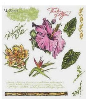 See D's Tropicals Flora Fauna + Phrases 13 Rubber Stamps and Case # 50018 SugarLoaf