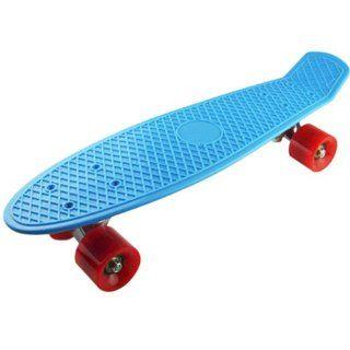Bl rd Complete Plastic Cruiser Skateboard Street Surfing Blue Board Retro Style  Longboard Skateboards  Sports & Outdoors