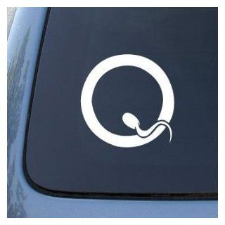 QUEENS OF THE STONE AGE BAND WHITE LOGO VINYL DECAL STICKER