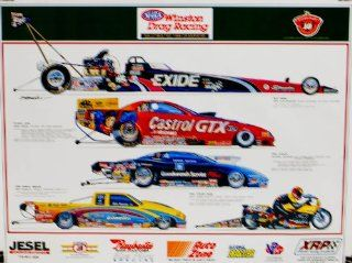 1999   Express Litho   NHRA Winston Drag Racing   Winston Select Top 10   Saluting 1999 Champions   Tony Schumacher / John Force / Warren Johnson / Bob Panella / Matt Hines   Illustrations Hector Cademartori   22x28 Inch Rolled Poster   Very Rare   Limited