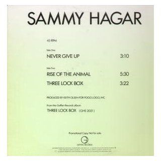 "NEVER GIVE UP 12"" SINGLE: Music"