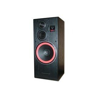 Cerwin Vega VE 12F Floor Standing Speaker 300 Watt Sold Individually, Also Available in a Pair. Includes 50ft of Speaker Wire Free Computers & Accessories