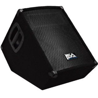 """Seismic Audio   SA 10MT PW   Powered 2 Way 10"""" Floor / Stage Monitor Wedge Style with Titanium Horn   250 Watts RMS   PA/DJ Stage, Studio, Live Sound Active 10 Inch Monitor Musical Instruments"""