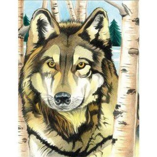 Colored Pencil By Numbers Intermediate Medium Wolf Colored Pencil Toys & Games