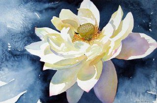 Lotus Unfurled, Giclee Print of Flower Watercolor, Showing a White Lotus Blossom Fully Open, 18 X 28 Inches   Watercolor Paintings