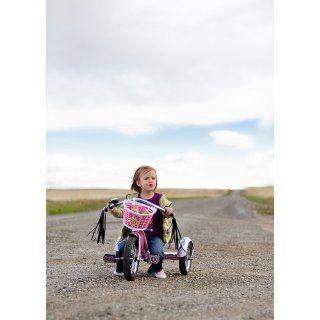 Schwinn Roadster 12 Inch Trike (Blue) Toys & Games