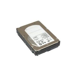 DELL 9Z1066 054 Dell 0HT953 300GB 15K SCSI SAS Hard Drive ST3300655SS (9Z1066054): Computers & Accessories
