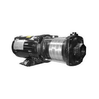 Dayton 5UXG3 Booster Pump, Multi Stage, 2 HP, 5 Stages: Industrial Centrifugal Pumps: Industrial & Scientific