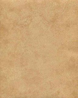 Galerie Illusions Feature Wallpaper Cracked Effect Gold Brown LL29506
