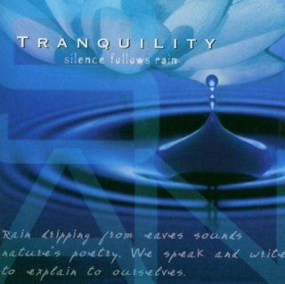 Tranquility   Silence Follows Rain Music