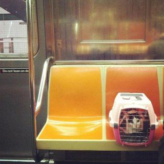 Petmate Lifestyle Cab Sm Lady Pink/Dk Pink S  Pet Kennels