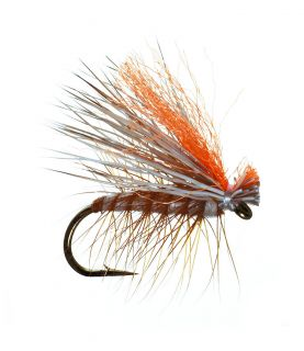 Umpqua Hot Wing Elk Caddis 2 Pack