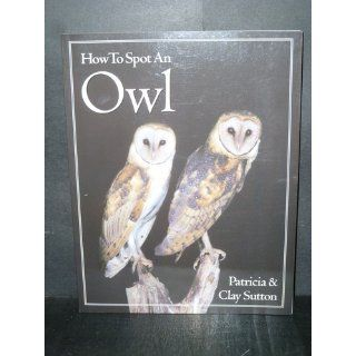 How to Spot an Owl: Patricia Taylor Sutton, Clay Sutton: 9780618012206: Books