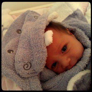 """Baby Aspen """"Hug alot amus"""" Hooded Hippo Robe, Lavender, 0 9 Months : Baby Girl Gift : Baby"""