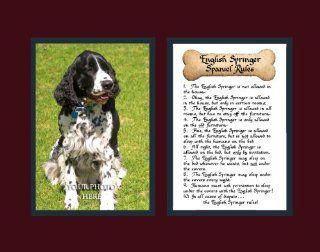 Dog Rules English Springer Spaniel Wall Decor Pet Saying Dog Saying   Decorative Plaques