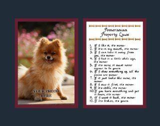 Pomeranian Property Laws Wall Decor Pet Saying Dog Saying Pomeranian Saying   Decorative Plaques