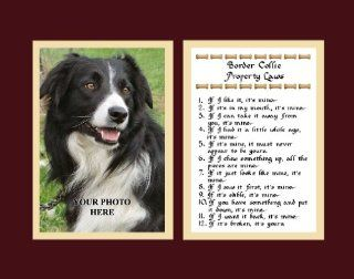 Border Collie Property Laws Wall Decor Pet Dog Saying Humorous Gift   Decorative Plaques