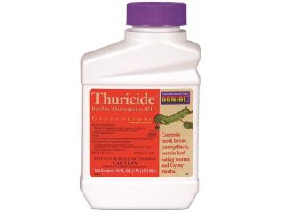 Bonide Products Inc P 803 Thuricide Bacillus Thuringiensis Concentrate
