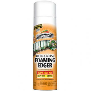 Spectracide Weed & Grass Foaming Edger   17oz   Lawn & Garden