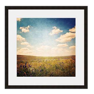 Framed Fine Art Photography   Colorado Field By Keren Lynn