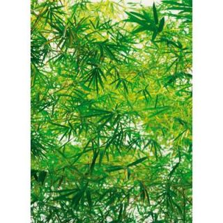 Ideal Decor 100 in. x 72 in. Bamboo Wall Mural DM372