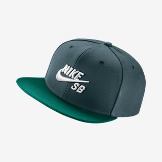 Gorro ajustable Nike SB Icon CL