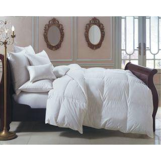 Downright BERN KG MED HUN Bernina 20 x 36 24oz 650 Fill Power White Goose Down European Pillow