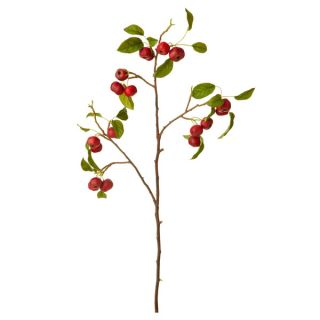 Red Crab Apple Branch (Set of 2)   16975770   Shopping