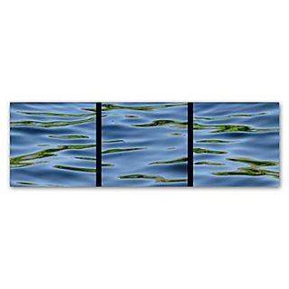 Trademark Fine Art Gregory OHanlon Water Triptych  6 x 19 (GO0044 C619GG)