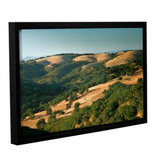 ArtWall Steve Ainsworth Hills Of California Gallery wrapped Floater