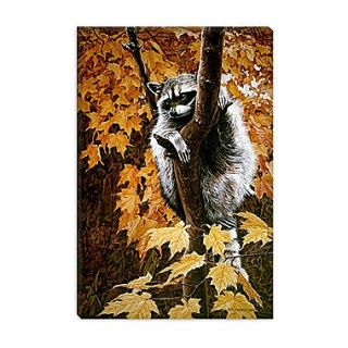 iCanvas Up a Tree by Ron Parker Photographic Print on Wrapped Canvas; 26 H x 18 W x 1.5 D