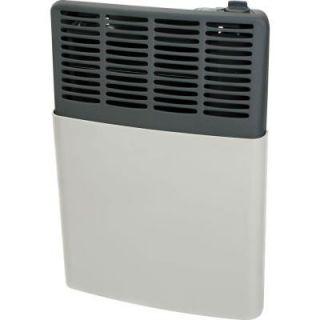 Ashley Hearth Products 8,000 BTU LP Gas Direct Vent Heater AGDV8L