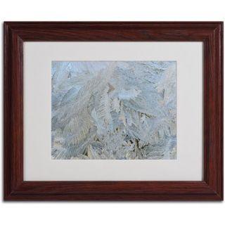"Trademark Fine Art ""Frost Pattern #5"" by Kurt Shaffer, Wood Frame"