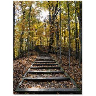 """Trademark Fine Art """"Fall Stairway 2"""" Canvas Wall Art by Kurt Shaffer"""